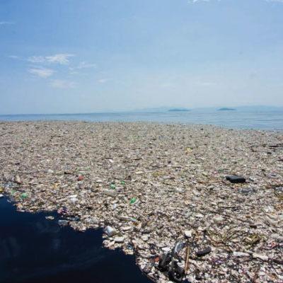 Histoire de la gestion des déchets
